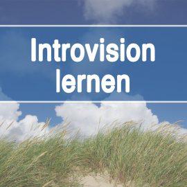 Introvision lernen: Kursstart in Hamburg Oktober 2020 – Info-Webinar am 14.9.2020 um 11.00 Uhr