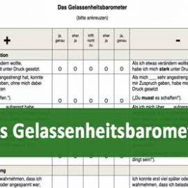 Aus der Forschung: Das Gelassenheitsbarometer von Prof. Kosuch